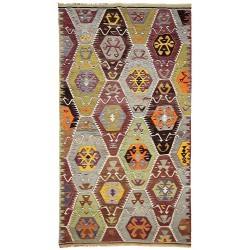 mute colors rug